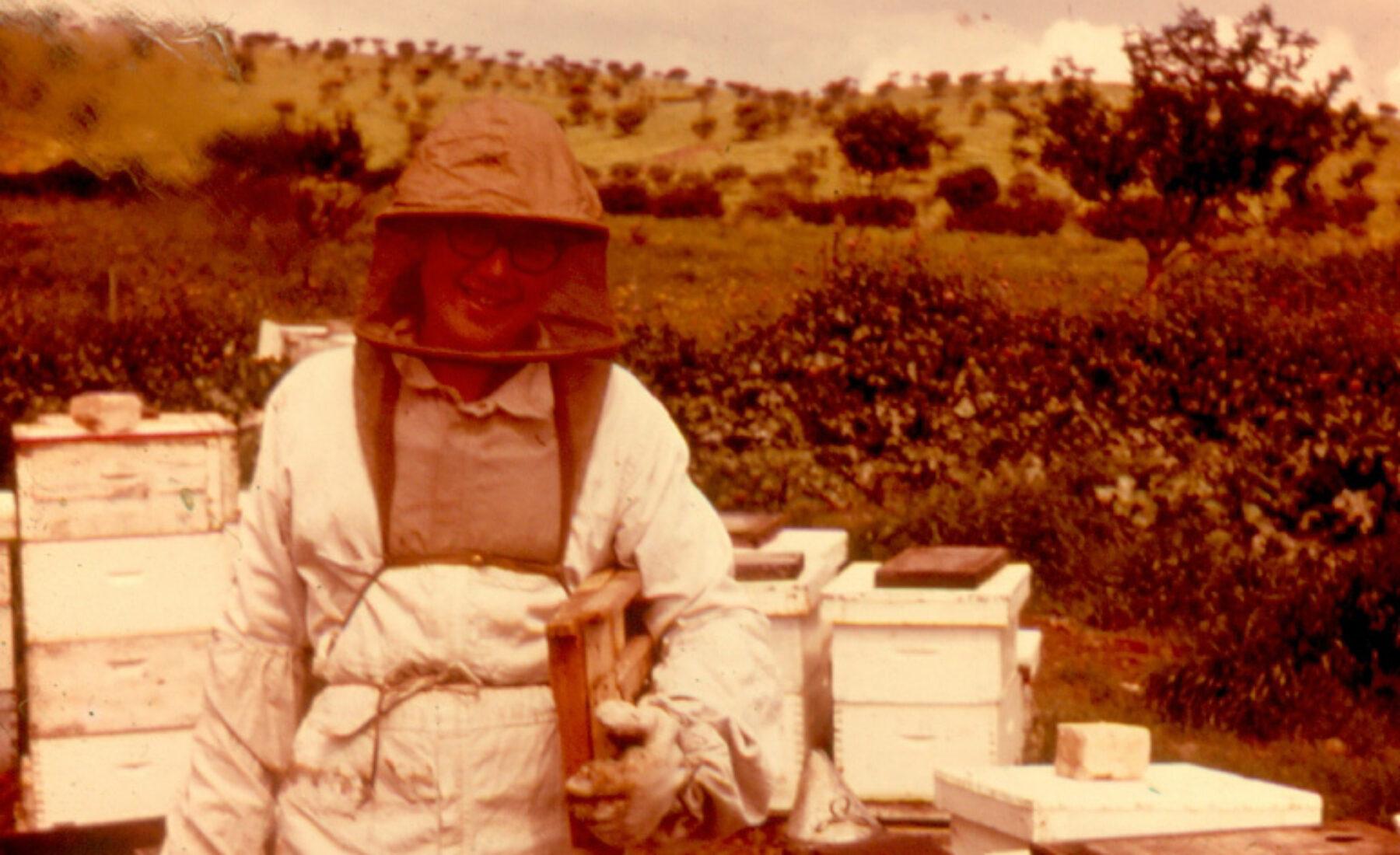 Gene and the honey bee
