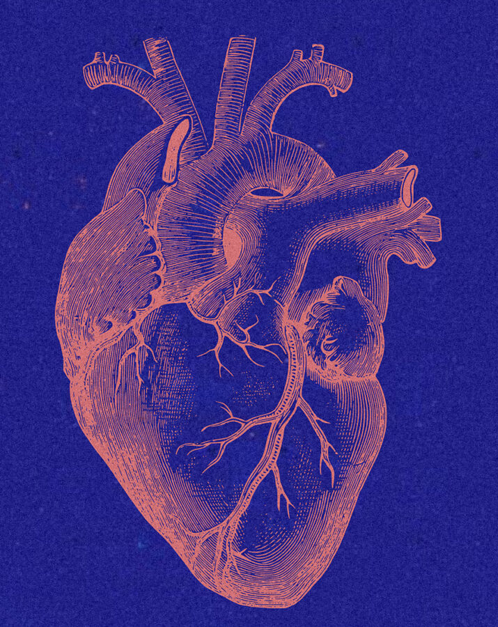 Heart Inlets